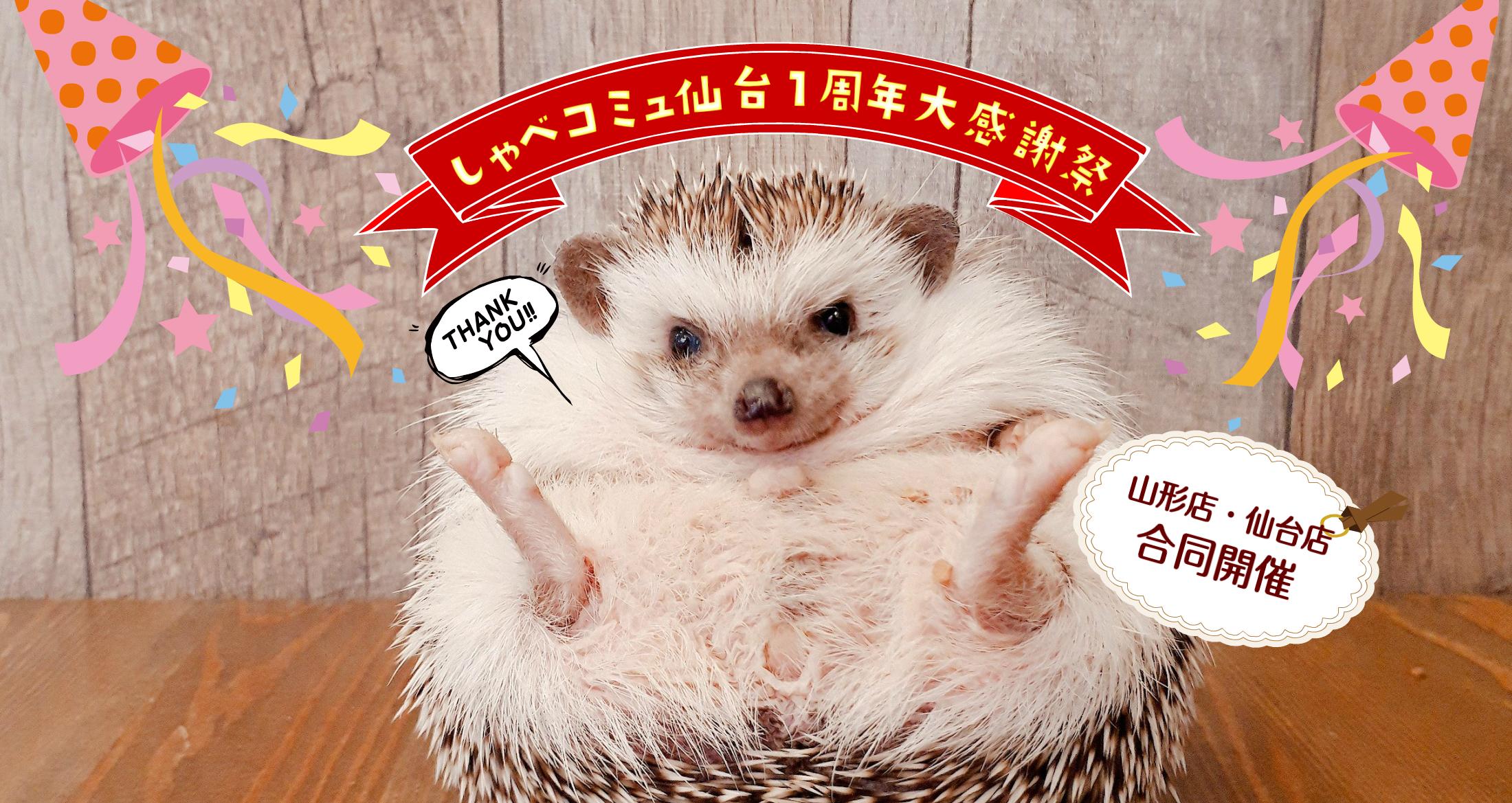 しゃべコミュ仙台1周年大感謝祭