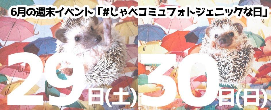 6月29日(土)30日(日)はフォトジェニックな日!!
