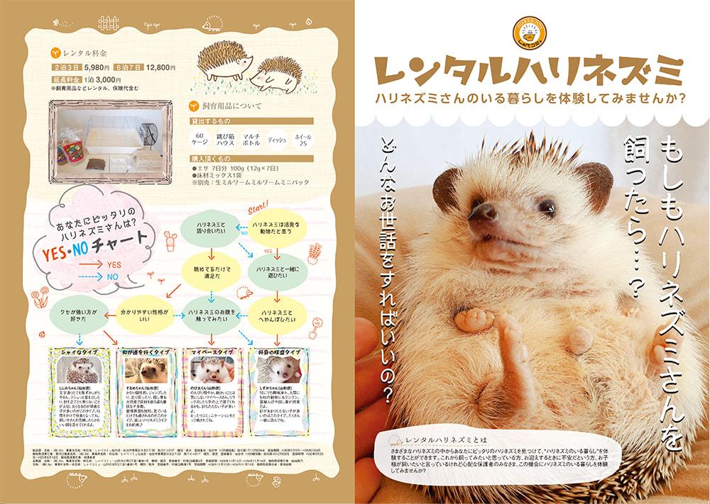 レンタルハリネズミのパンフレット(表面)